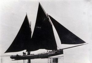 Zulu herring Drifter Pansy under sail