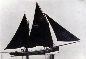 Zulu herring Drifter Pansy under sail