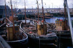 Fifie Zulu Fishing Boat whitehills